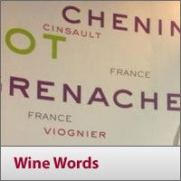 Helpful Hints - Wine Words